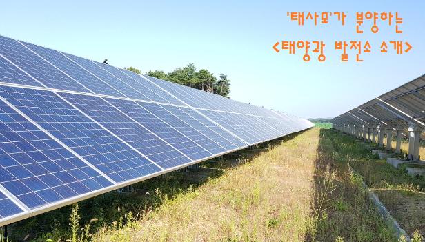 태양광사업2.png
