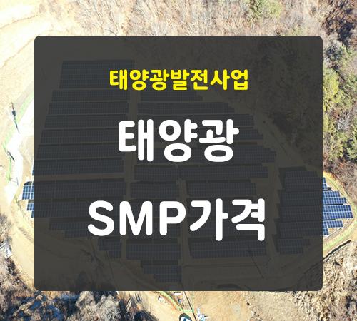 2월-둘째주-smp가격.png