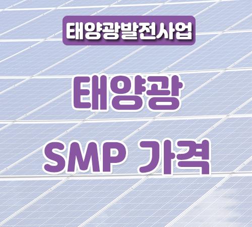 8월-셋째주-smp가격-썸네일.png