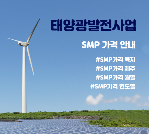 smp가격-1월-썸네일.png