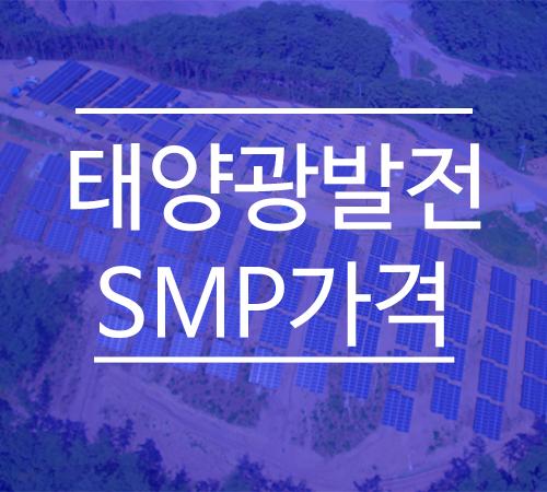 태양광발전-SMP가격-8월-넷째주.png