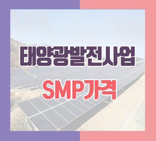 10월-마지막-주-smp가격.png