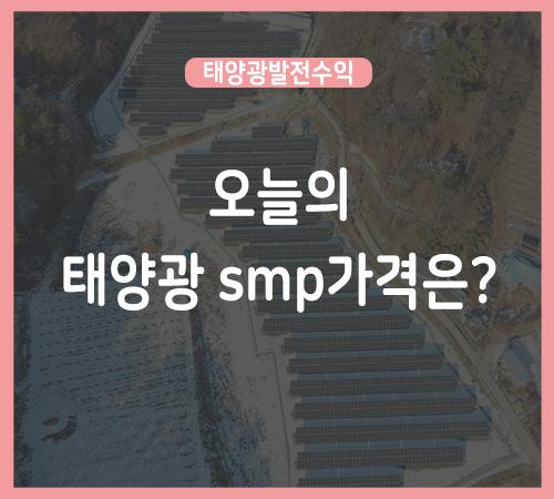 1월-마지막주-smp가격.png